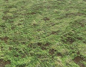 Soil and grass 3 3D model