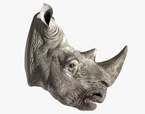 3D asset realtime Rhino Head