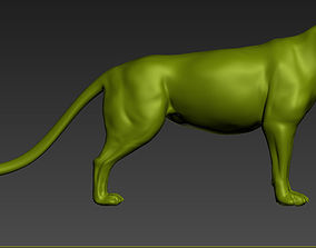 panther Panther model