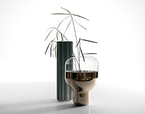 Vases with Plant 3D model