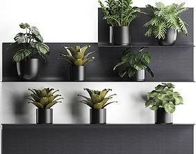 3D Plant set wall decor vertical garden 50