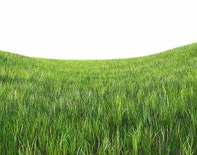 Dynamic Grass 3D model