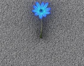 3D model Blue Flower - Verion 5 - Object 35