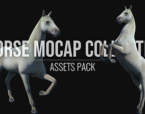 Horse Mocap Collection 3D asset