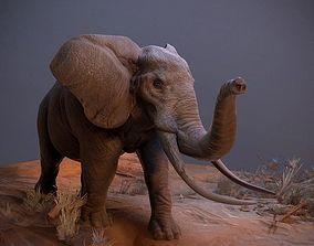 3D model Realistic African Elephant