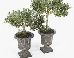 Crawfordsland Metal Pot Planter 01 3D