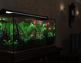 Plant Aquarium 3D model