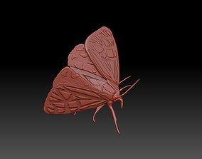 3D print model Moth butterfly