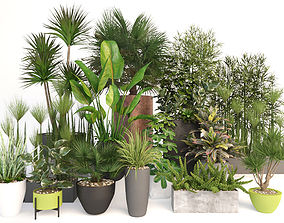 3D model Plants 19