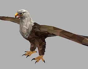 3D asset Bald Eagle Low Polygon Art Bird Animal