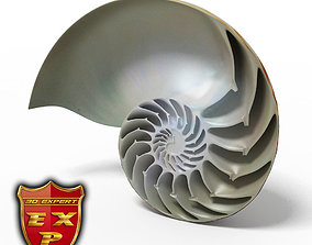 Seashell Nautilus sliced nautilus 3D