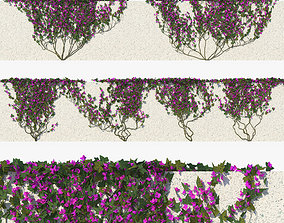 3D Ivy with Flowers 01 ivy