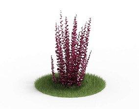 3D model Bush Thorny Leaves