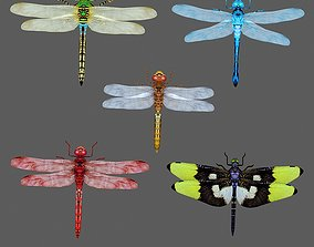 3D Dragonfly green