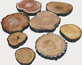 3D model Wood Log Slices log