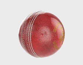 Cricket Ball 3D model stadium