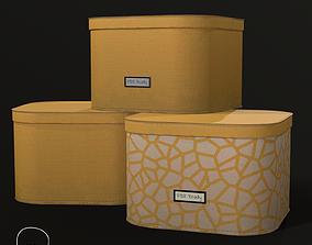 Designer Storage Box -Double Texures 3D asset