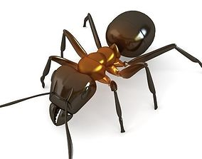 3D Red Ant