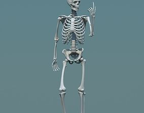 3d model human skeleton biped game-ready