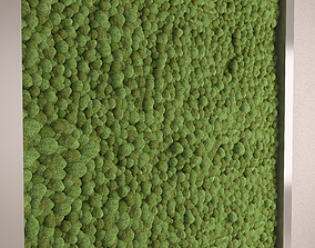 3D Highly detailed Moss wall