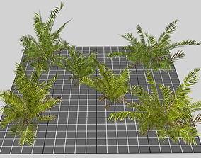 3D Mobile Tropical Bush