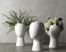 3D Wig Vases with Plants