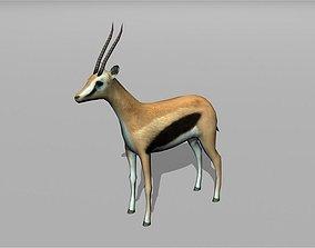 3D model gazelle