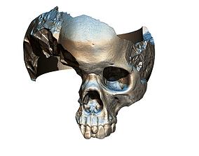 Damage Broken Salvage Skull Ring 3D print model