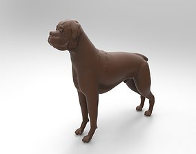dogs 3D printable model boxer