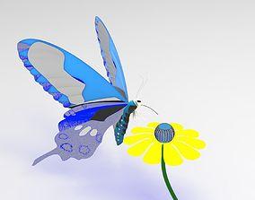 Butterfly 3D invertebrate