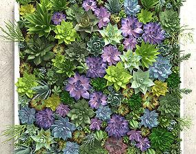 Succulents wall 3D model