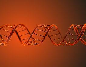 DNA Static Hipoly Model