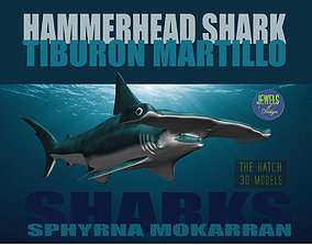 tiburon Hammerhead Shark 3D model