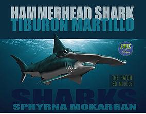 tiburon Hammerhead Shark 3D model