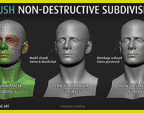 Poligone - ZBrush Non-Destructive 3D model