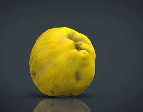 Grapefruit 3D model