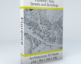 Florence Streets and Buildings 3D topology