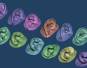 Human natural ear anatomy assorted 3D printable model