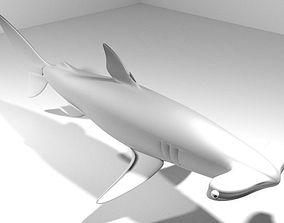 Shark - Hammerhead 3D