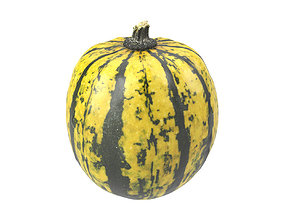 Photorealistic Decorative Gourd 3D Scan 2