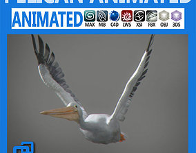 Animated Pelican 3D