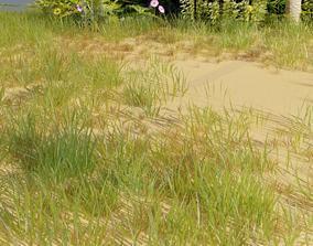 Grass Pack 3D asset game-ready