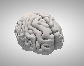 3D model intellectual Brain