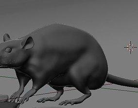 Rat model 3D