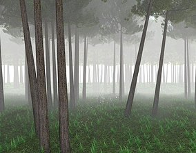3D The Forest