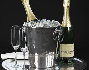 3D model Champagne in Bucket