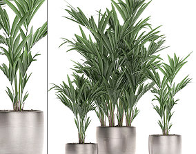 Decorative palm in a flowerpot 696 3D model