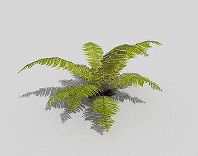 low poly tropical foliage 3D asset