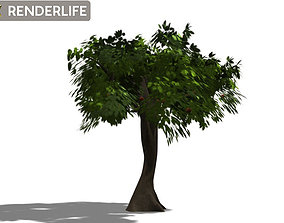 Tree bush 3D