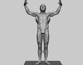Stylized Male Anatomy 3D